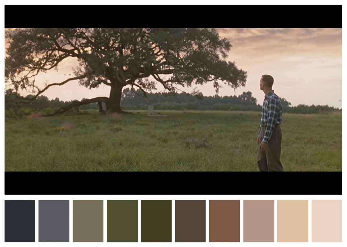 Filmlerde Kullanılan Renkler Hiç Böyle Güzel Sergilenmemişti
